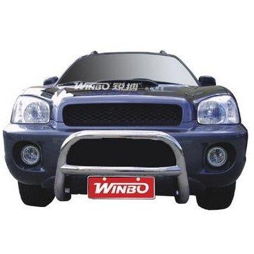 Передняя защита Winbo (A130004) на Hyundai Santa Fe