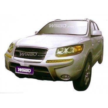 Передняя защита Winbo (A130399) на Hyundai Santa Fe